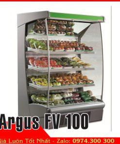 tủ mát trưng bày trái cây Argus FV 100