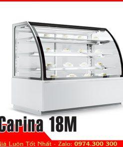 tủ mát bánh kem sinh nhật Carina 18M