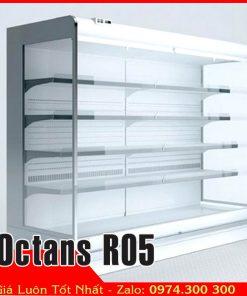 Tủ mát trưng bày trái cây Octans R05