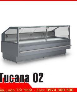 Tủ mát kính vuông trưng bày thịt heo Tucana 02
