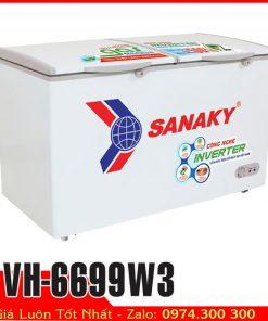tủ đông sanaky VH-6699W3