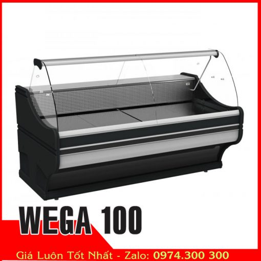 tủ đông mềm trưng bày thịt heo và thực phẩm tự chọn WEGA 100