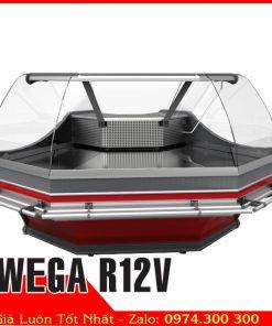 Tủ mát trưng bày ghép góc tủ thịt WEGA R12V