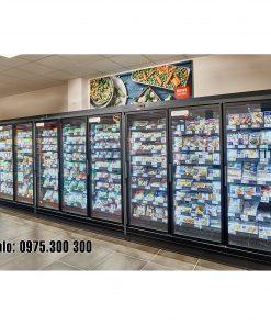 tủ đông siêu thị carrier hàng đông lạnh