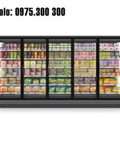 tủ đông siêu thị carrier